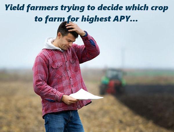 yield farm decision.JPG
