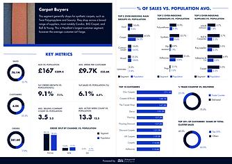 customer insight infographics