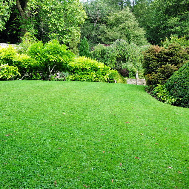 Beautiful Garden with a Freshly Mowed La