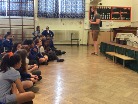 A visit from the Animal Man for Year 6!