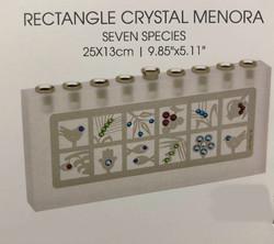 Rectangle Crystal Menorah
