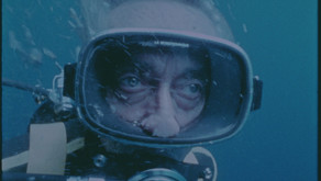 TIFF 2021: 'Becoming Cousteau' and 'Flee'