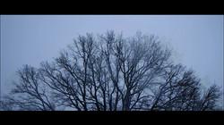 8a_Obłoki_płyną_nad_nami_-_film_Anny_Kon