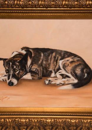 Ruger Raquel's Dog