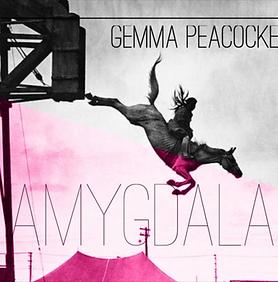 Gemma Peacocke_Amygdala