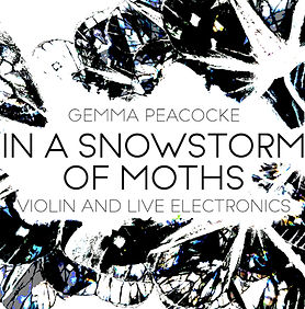 In A Snowstorm of Moths_flattened_3.jpg