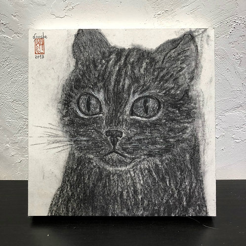 neco (cat) ~S0_drawing2678001~