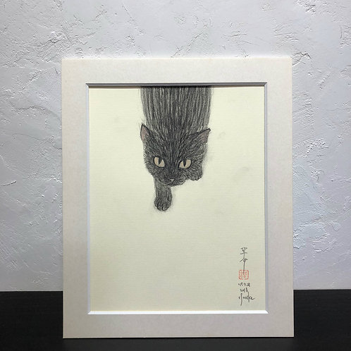 neco (cat)~6G_drawing2678006~
