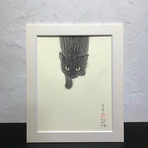 neco (cat)~6G_drawing2678006~