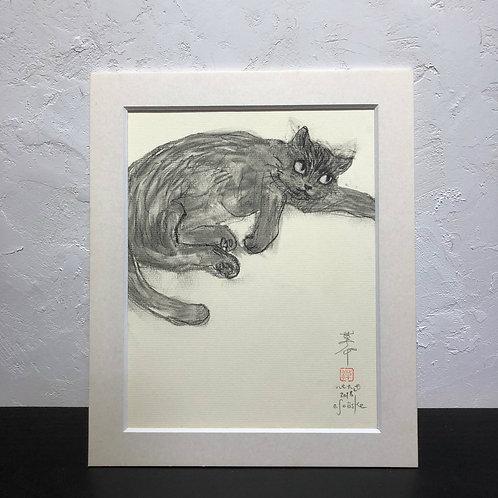 neco (cat)~6G_drawing2678003~