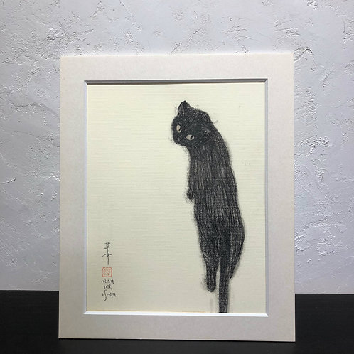 neco (cat)~6G_drawing2678005~
