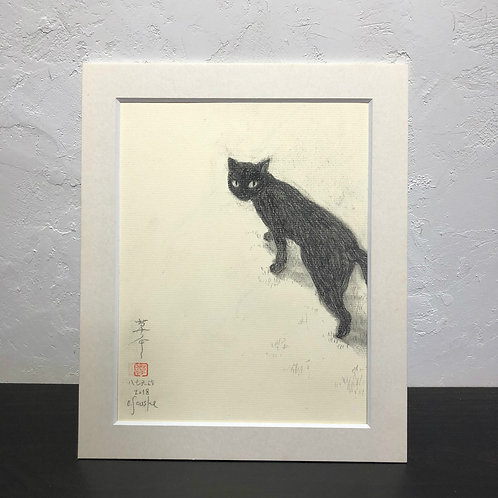 neco (cat)~6G_drawing2678001~