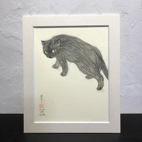 neco (cat)~6G_drawing2678004~