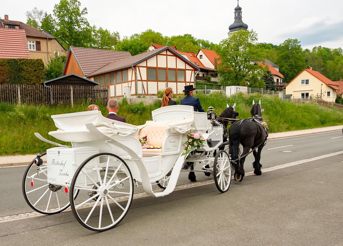 Friesengespann Reiterhof-Teicha