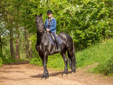 Auf dem Reiterhof Teicha  hat sich für Pferdeliebhaber viel getan