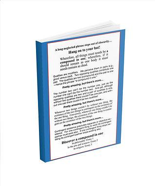 Book_Mockup_Backcover.jpg