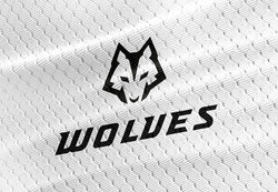 Clearfield Wolves Men's Basketball