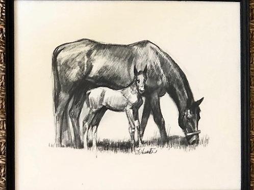 Horses Sketch