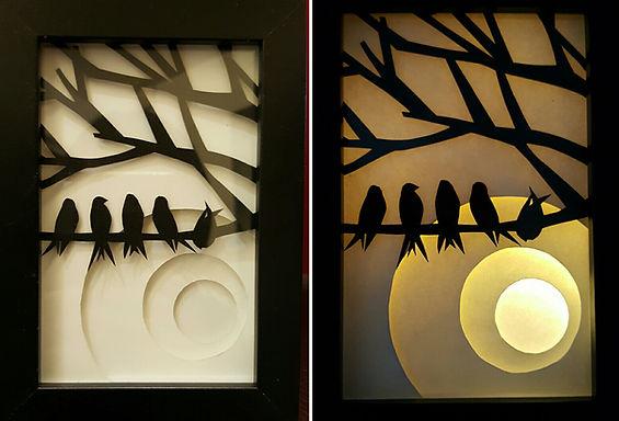 5 Birds