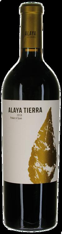 Alaya Tierra Almansa DO 2016 Bodegas Atalaya in Albacete
