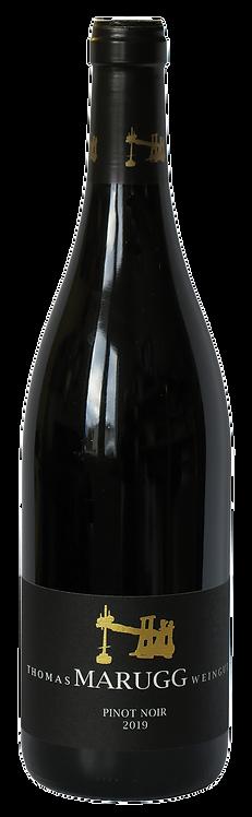 Pinot Noir AOC 2019  Fläsch, Bündnerherrschaft