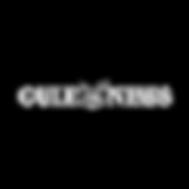 gulf-news-logo_edited.png