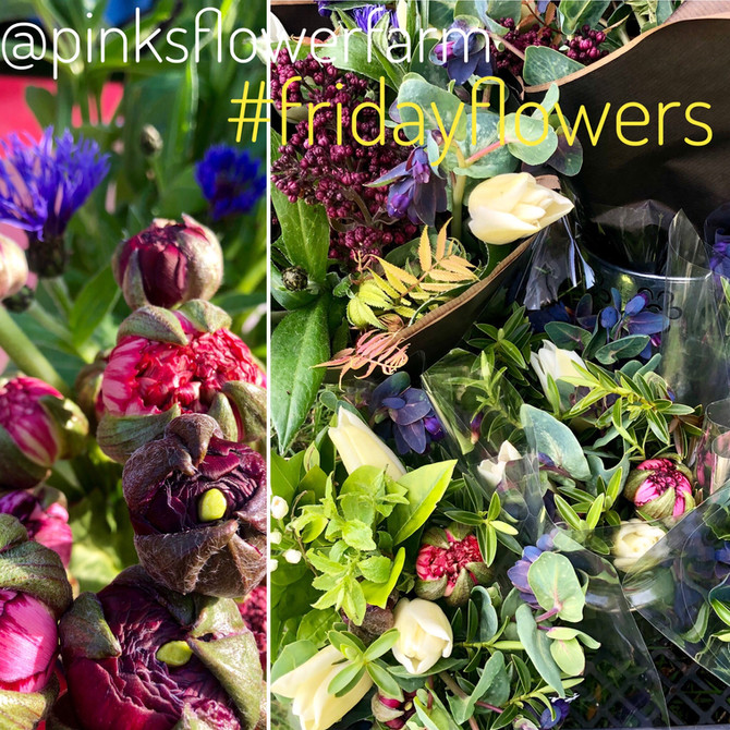 Friday Flowers May 10th 2019.jpg