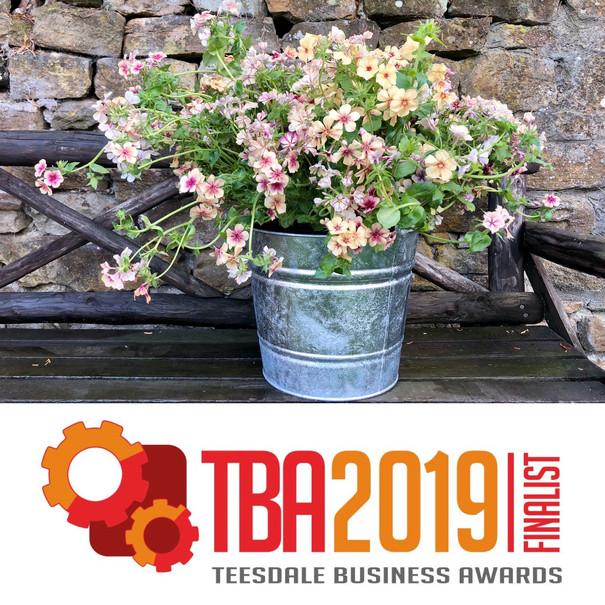 Teesdale Business Awards.JPG