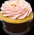 berry-cupcake.png