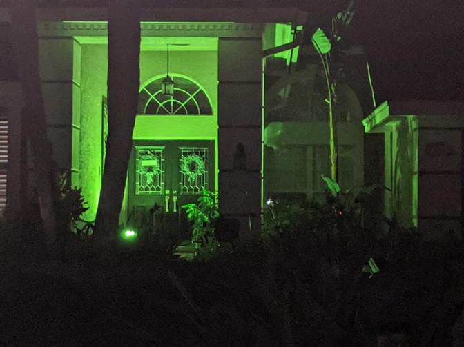 Green 15.jpg