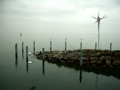 Bodensee - Nebelimpression 3