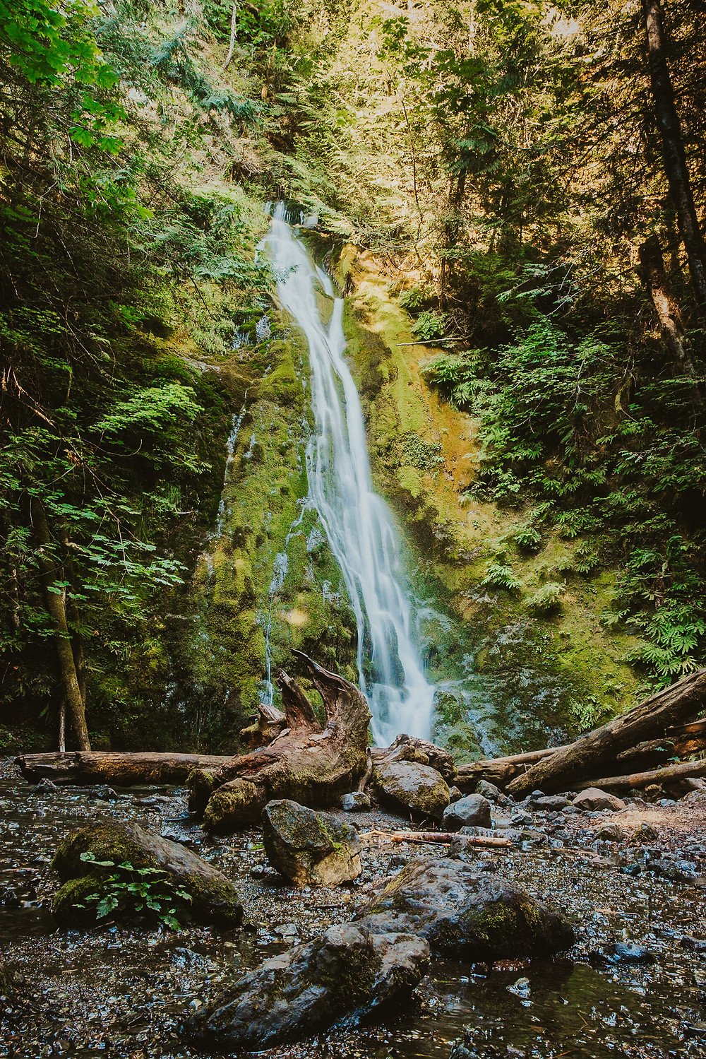 Olympic Peninsula Waterfall