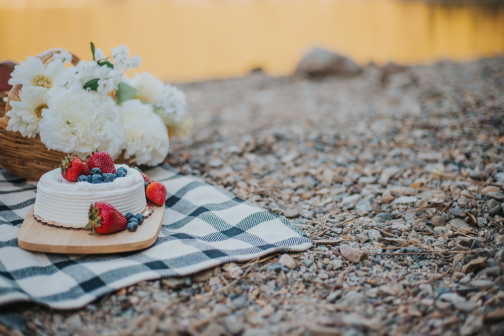 Lakeside Picnic Elopement
