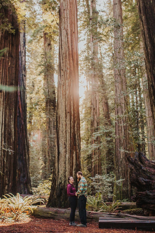 Redwood National Park Elopement Hike