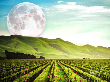 June 24th - Final Super Moon of 2021