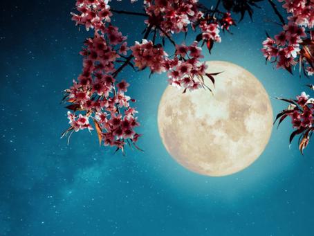 Full Moon Astrology Forecast July 23 + Guru Purnima