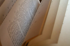 Hojas de un libro