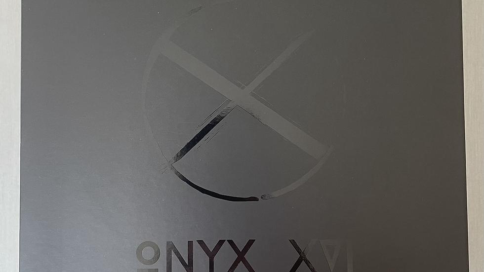 ONYX XVI LED MASK & NECK PANEL