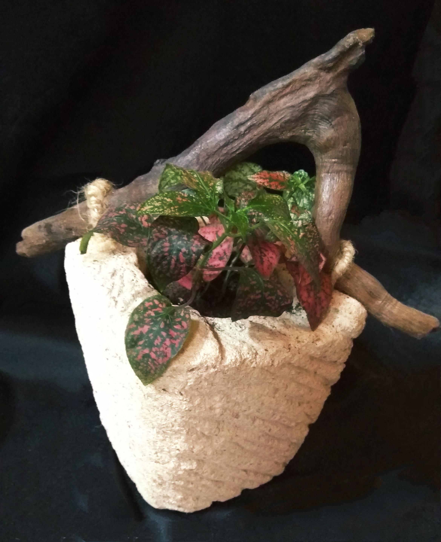 maceta de piedra y madera original