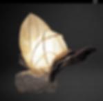 lampbarcofonds.png