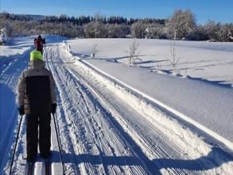 Åk 1-6 genomförde fjolårets Härjulfa i Hede.