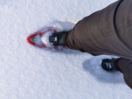 Hyr snöskor i Hede- en ny unik upplevelse