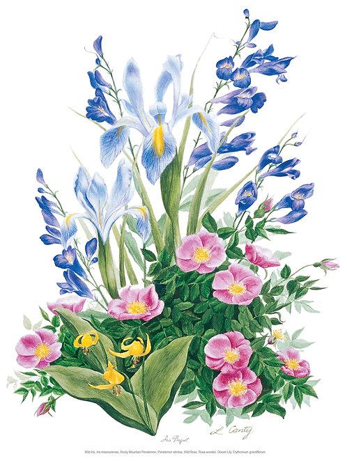 Wildflower Botanical Prints - Iris Bouquet