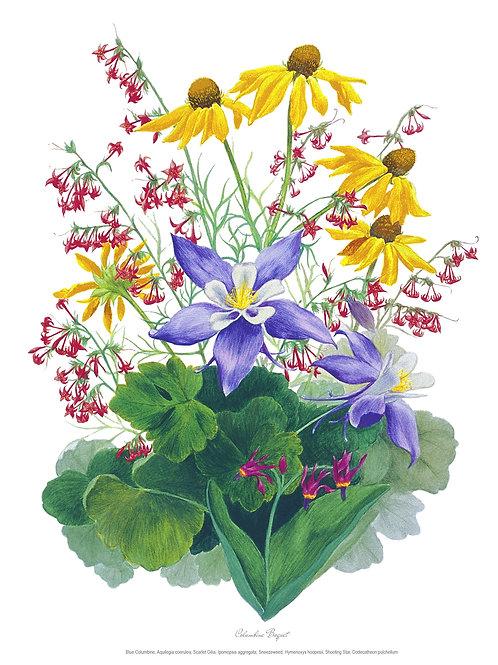Wildflower Botanical Print - Columbine Bouquet