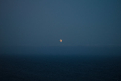 Worm Moon, 2020