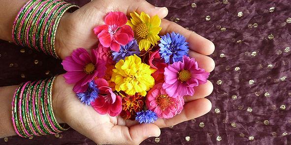 fleurs colorées dans deux mains en coupe