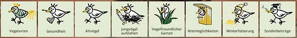 wildvogelhilfe.org.webp