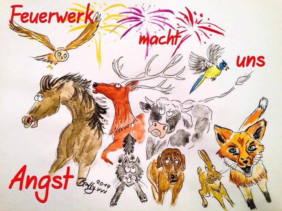 Feuerwerk macht Tieren Angst - Silvester