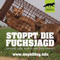 Fuchsjagd-abschaffen-_FILEminimizer_.web