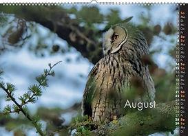 08_August (FILEminimizer).jpg